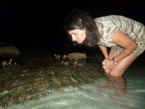 Кораллы, торчащие из воды в отлив. Мальдивы