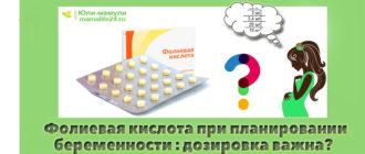 фолиевая кислота дозировка