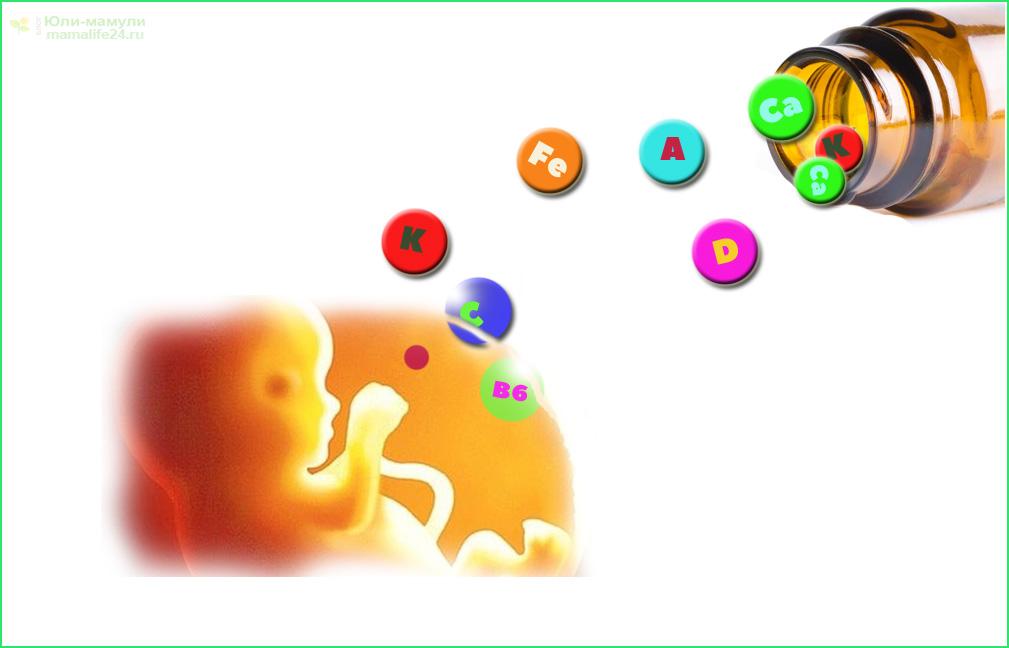 эмбрион с витаминами