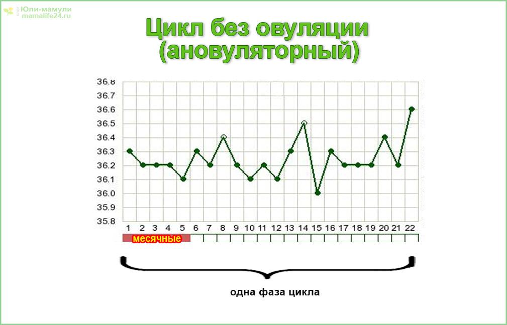 График базальной температуры в цикле без овуляции (ановуляторный)