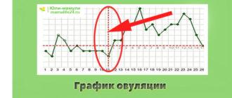 График овуляции