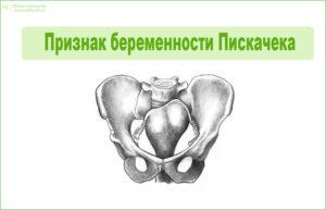 Признак беременности Пескачека