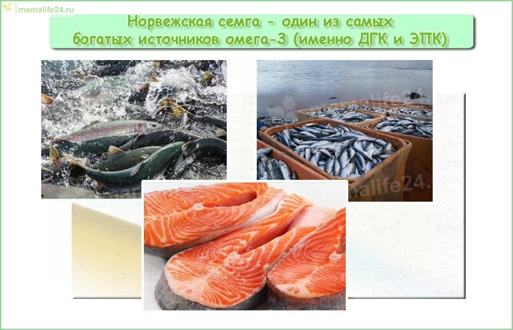 Самй богатый омега-3 (ДГК и ЭПК) продукт свежая норвежская семга.